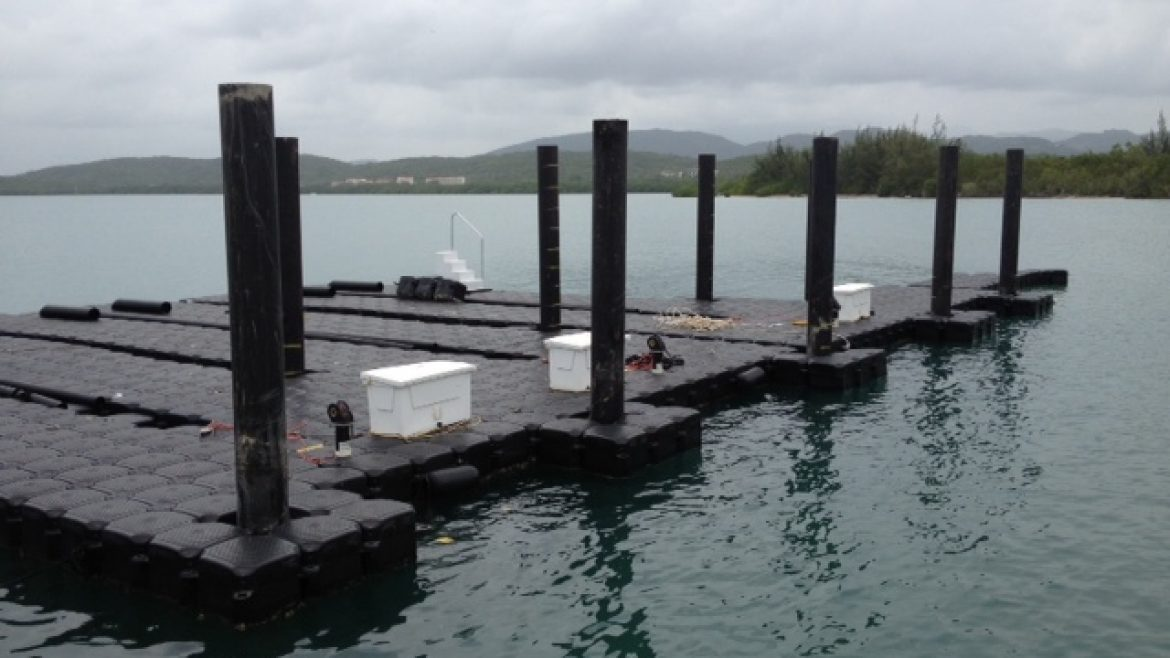 Title: Installation of New Steel Piles and Floating Docks Location: Roosevelt Roads Base, PR Value: $527,200.00 Awarded: 2012